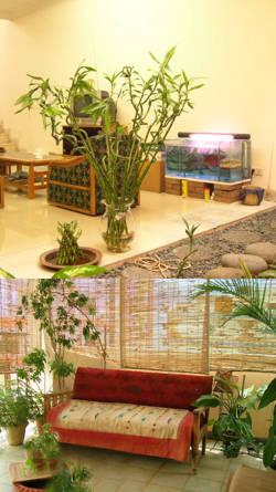 Pin decoracion interior bambus baules y biombos on pinterest for Bambu decoracion interior