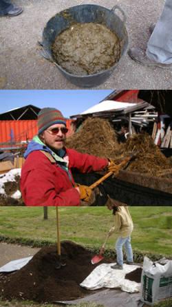 Hacer abono organico como hacer humus de lombriz abono - Hacer abono organico ...