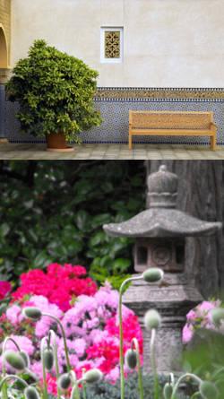 Plantas y flores ornamentaci n y decoraci n para jardines for Elementos de jardineria