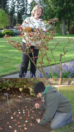 Consejos de jardineria simple especial sobre consejos de - Consejos de jardineria ...