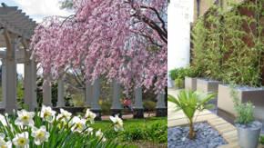 Decoracion del exterior para jardineria ideas y consejos