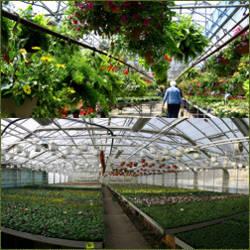 como hacer un invernadero de flores