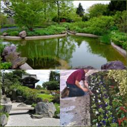 Paisajismo de jardines con flores y accesorios - Paisajismo jardines pequenos ...