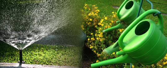 riego basico para jardineros, elementos, tips y consejos