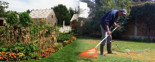 jardineria en otoño
