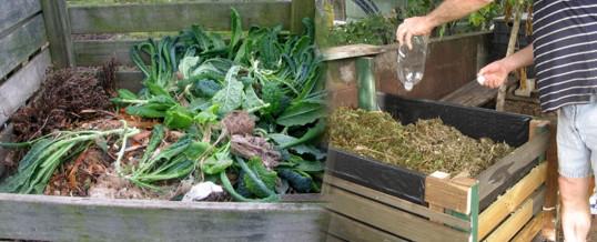 consejos para el compost casero