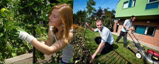 preparar el jardín para el verano