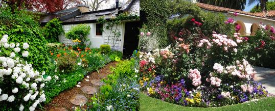 tener un jardín perfumado y florido