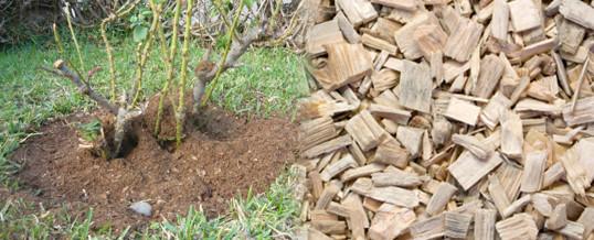 utilizar serrín y astillas en el jardín