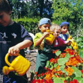 los niños y la jardinería