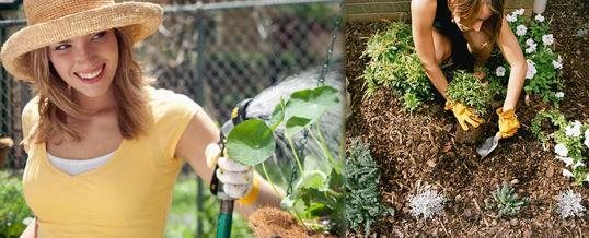 usar la jardinería para relajarse